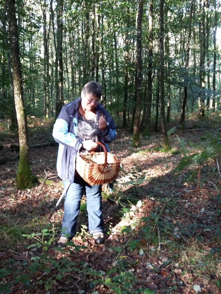 Premier champignon trouvé par Martine