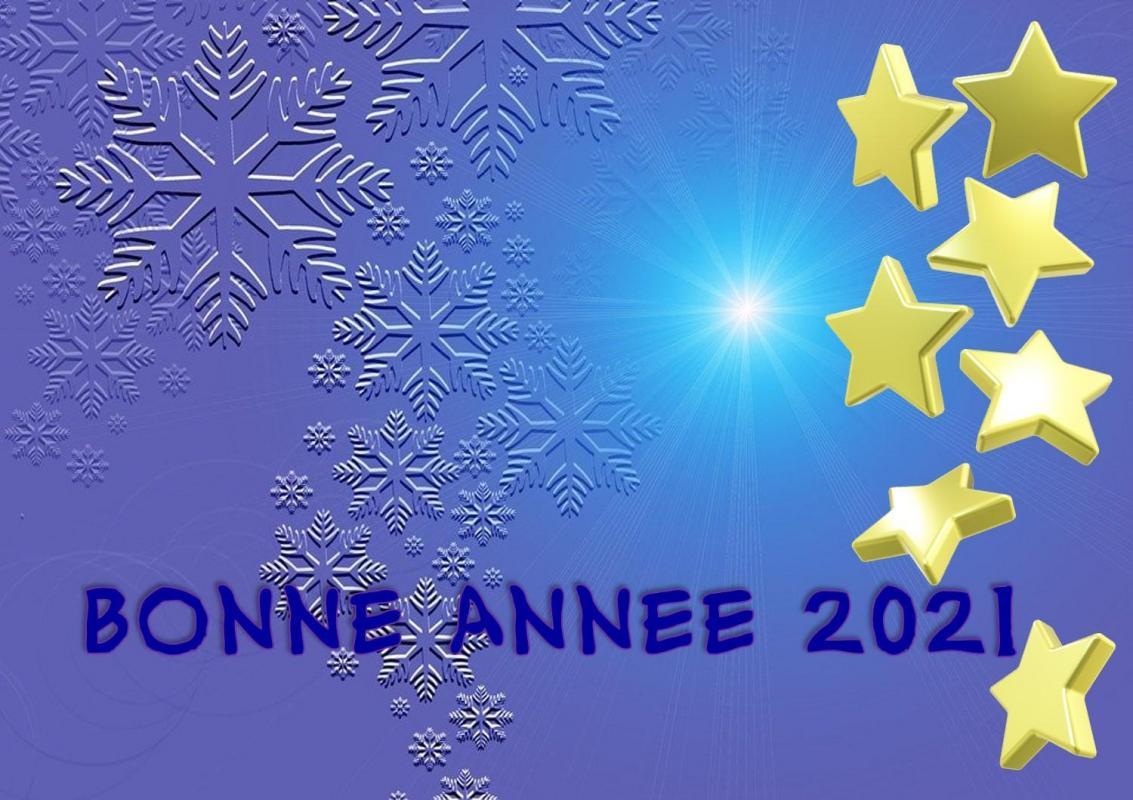 Bonne annee 2021 1